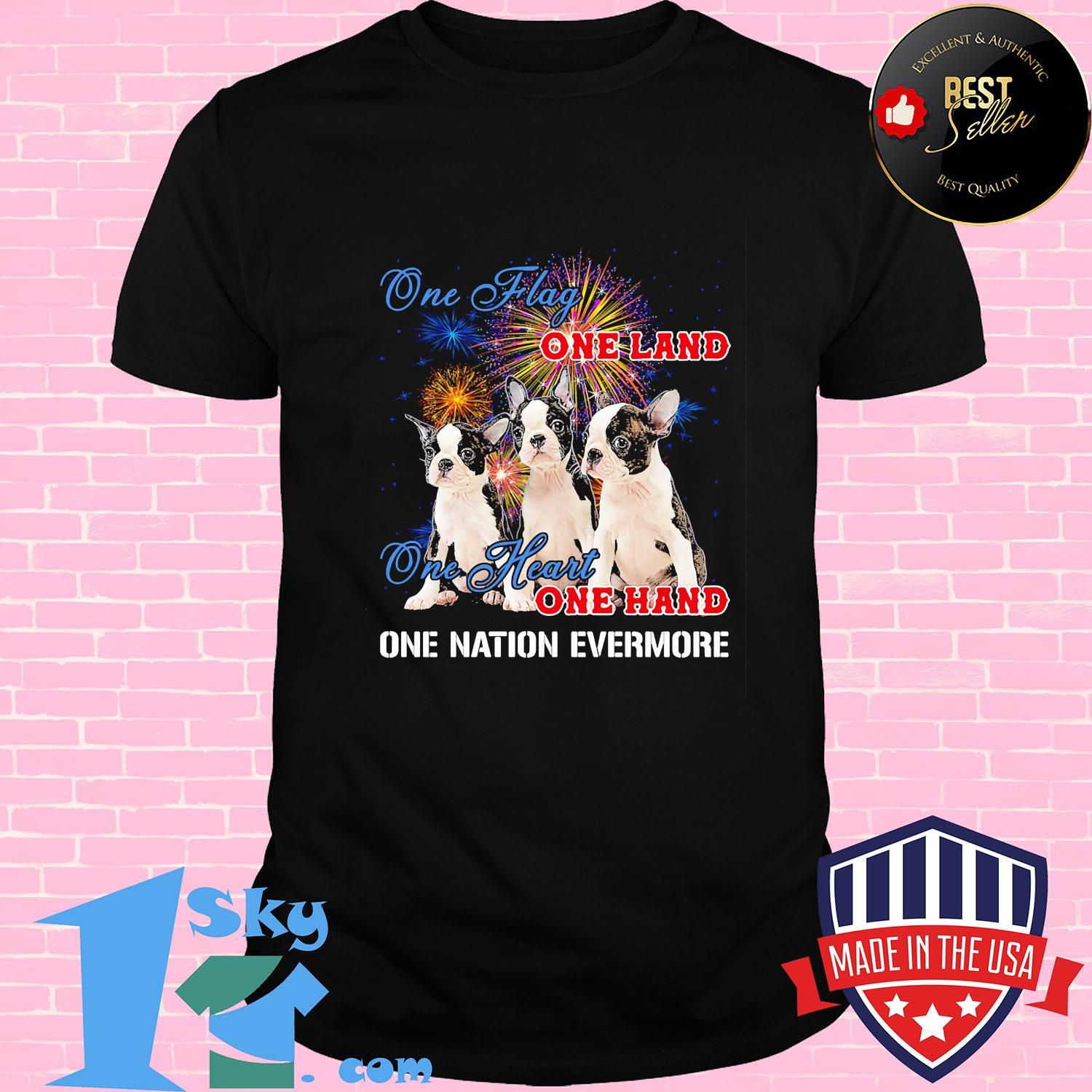 One flag one land one heart one hand one nation evermore shirt