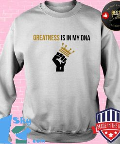 Greatness Is In My DNA Black Lives Matter Shirt Sweater