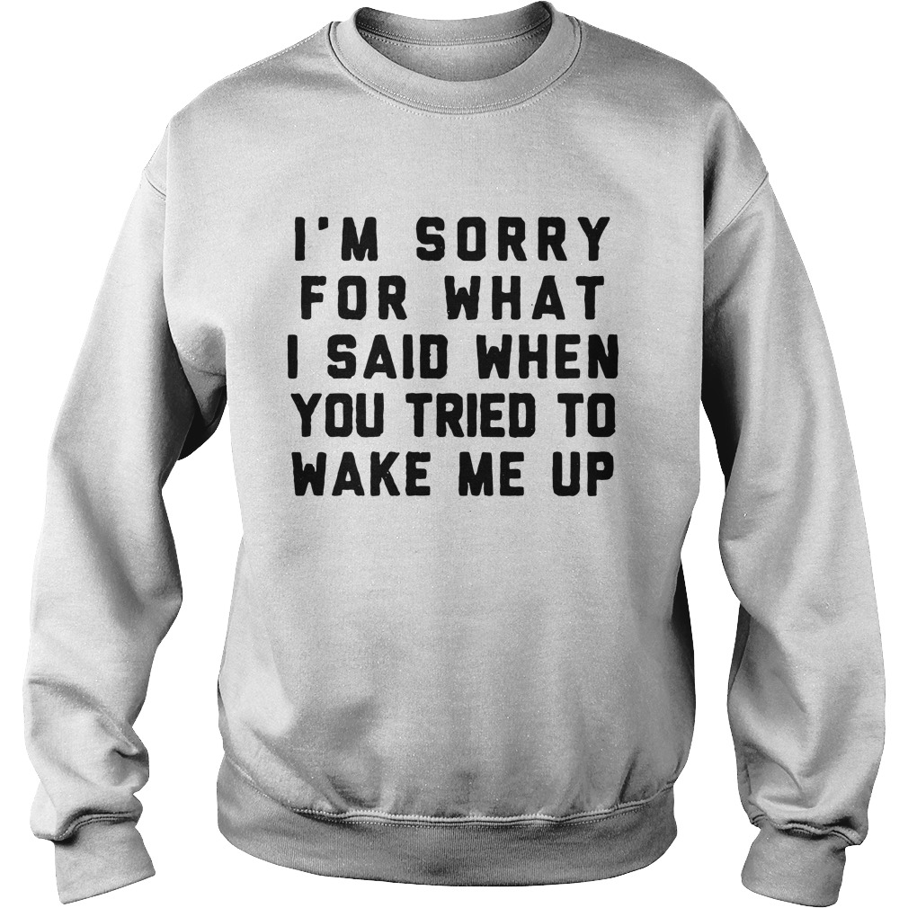 I'm Sorry For What I Said When You Tried To Wake Me Up Sweatshirt unisex