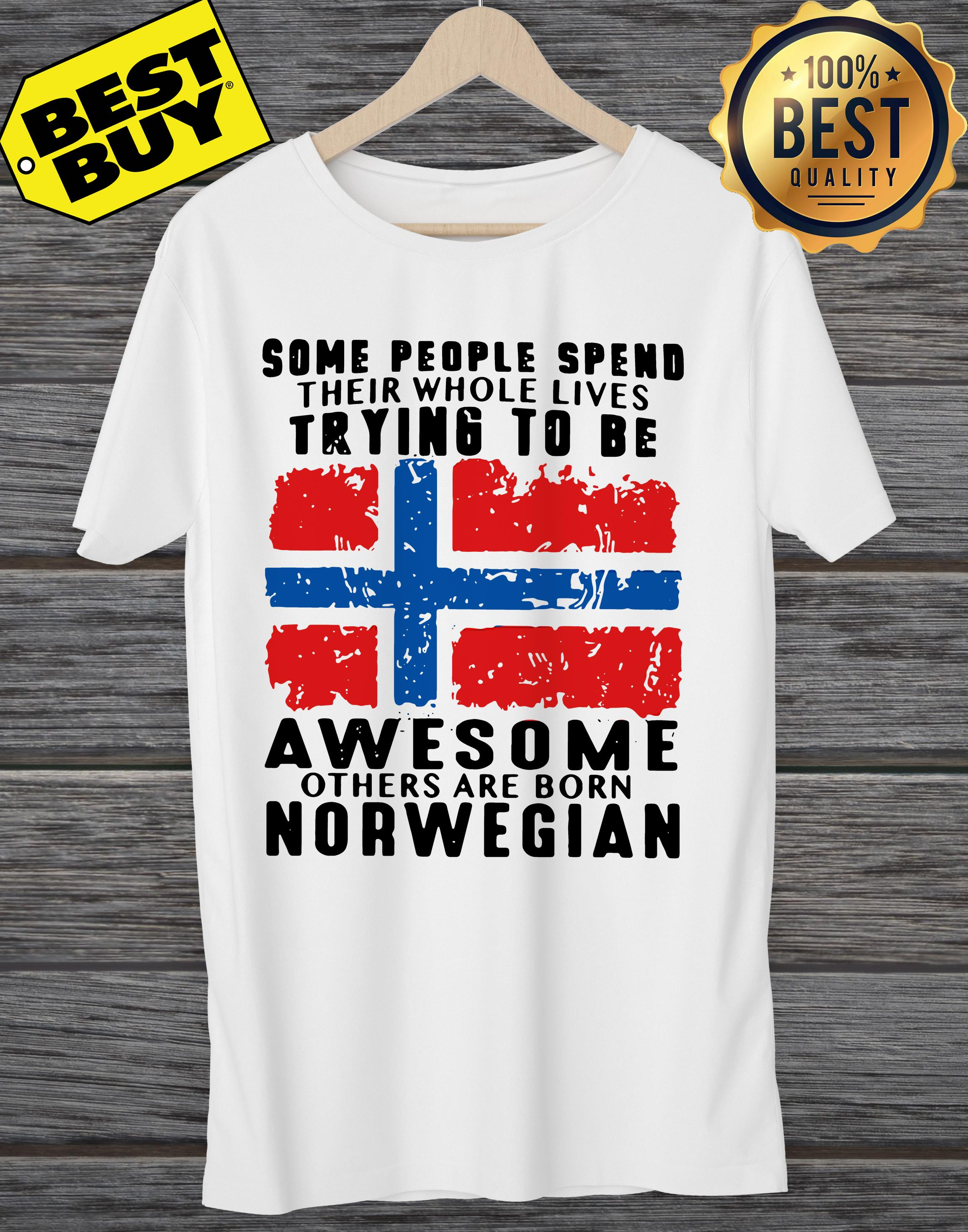 Some People Spend Whole Lives Trying Awesome Others Born Norwegian Ladies Tee