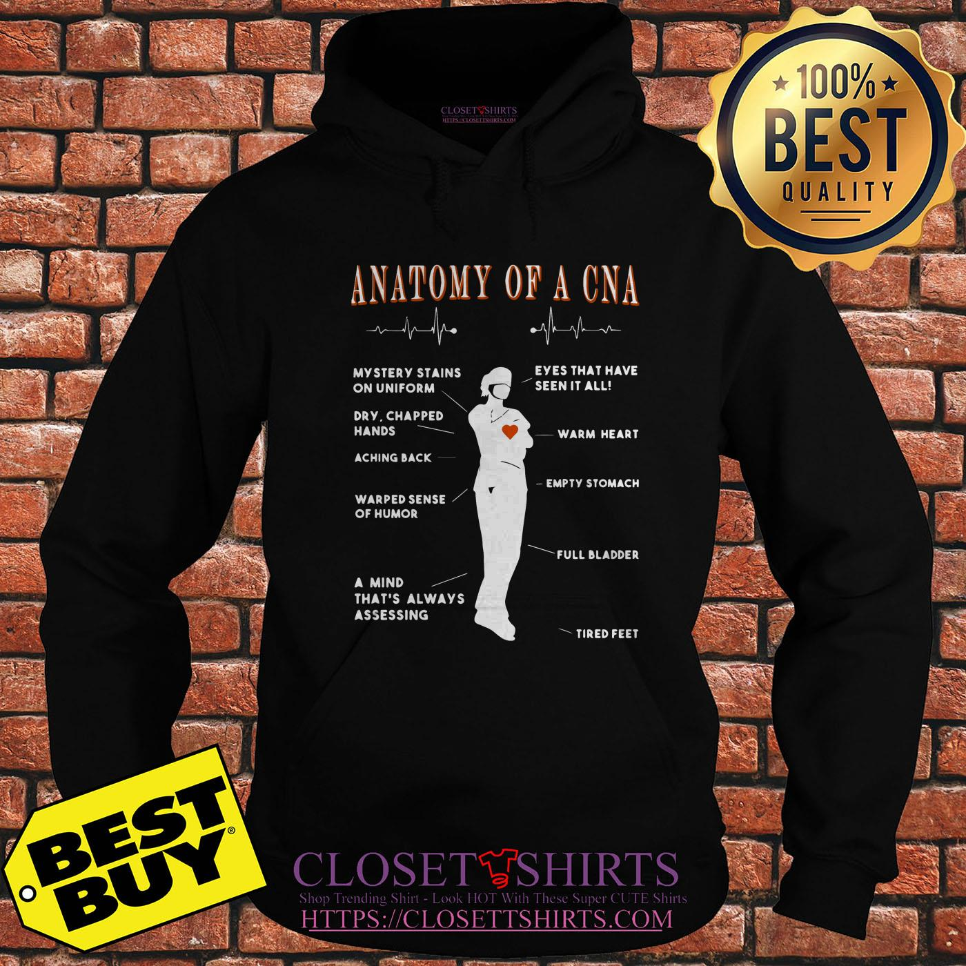 Anatomy Of A Cna Mystery Stains On Uniform Eyes That Have Seen It All Dry hoodie