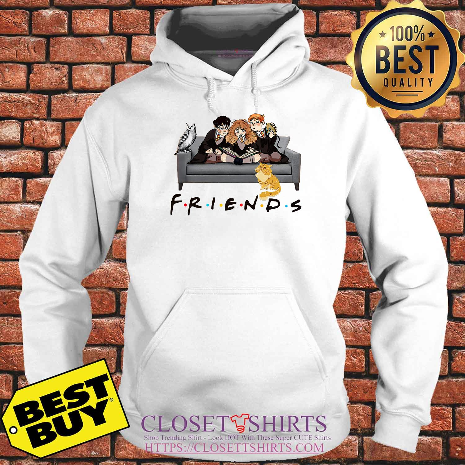 Friends Harry Potter Ron And Hermione Cat And Owl hoodie