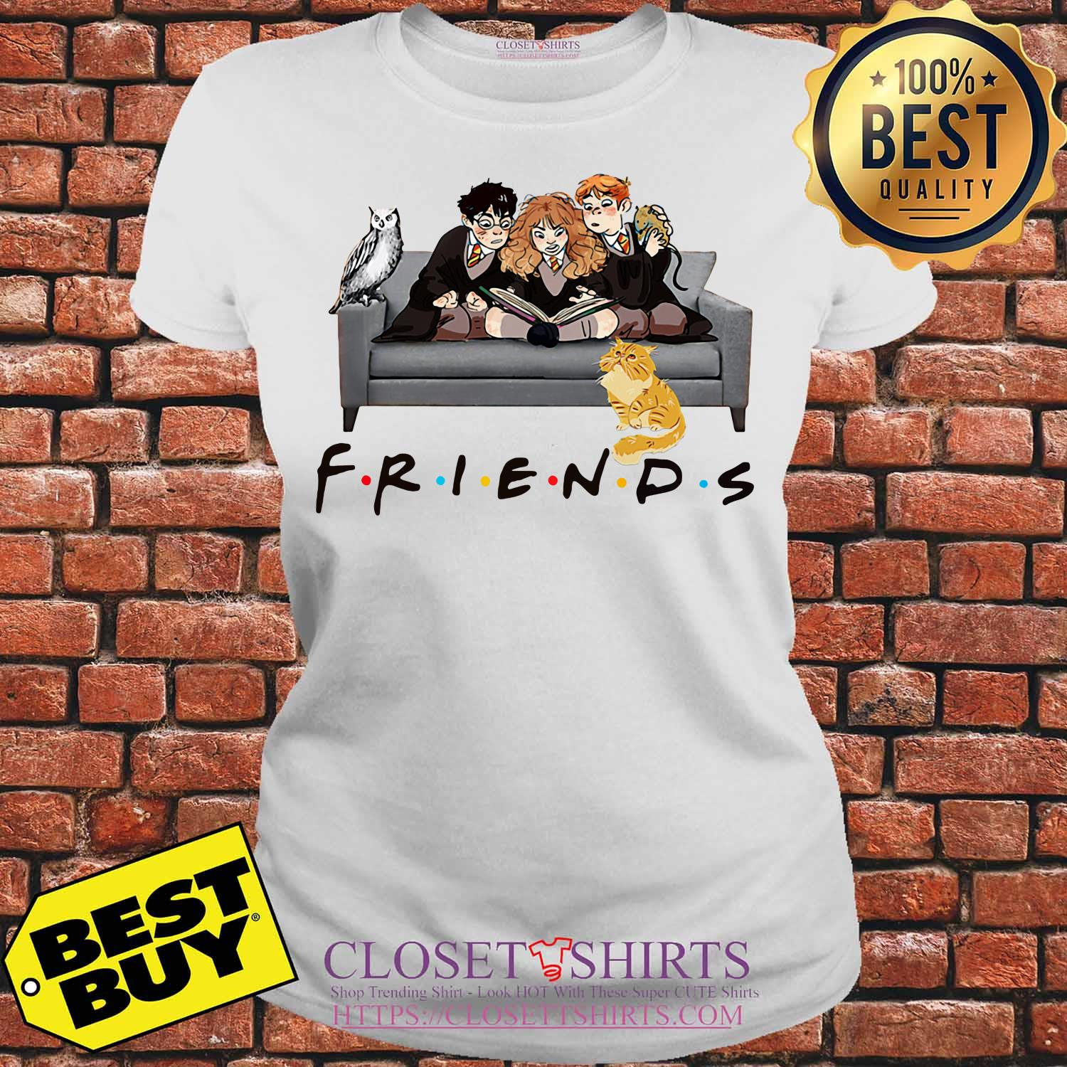 Friends Harry Potter Ron And Hermione Cat And Owl ladies tee