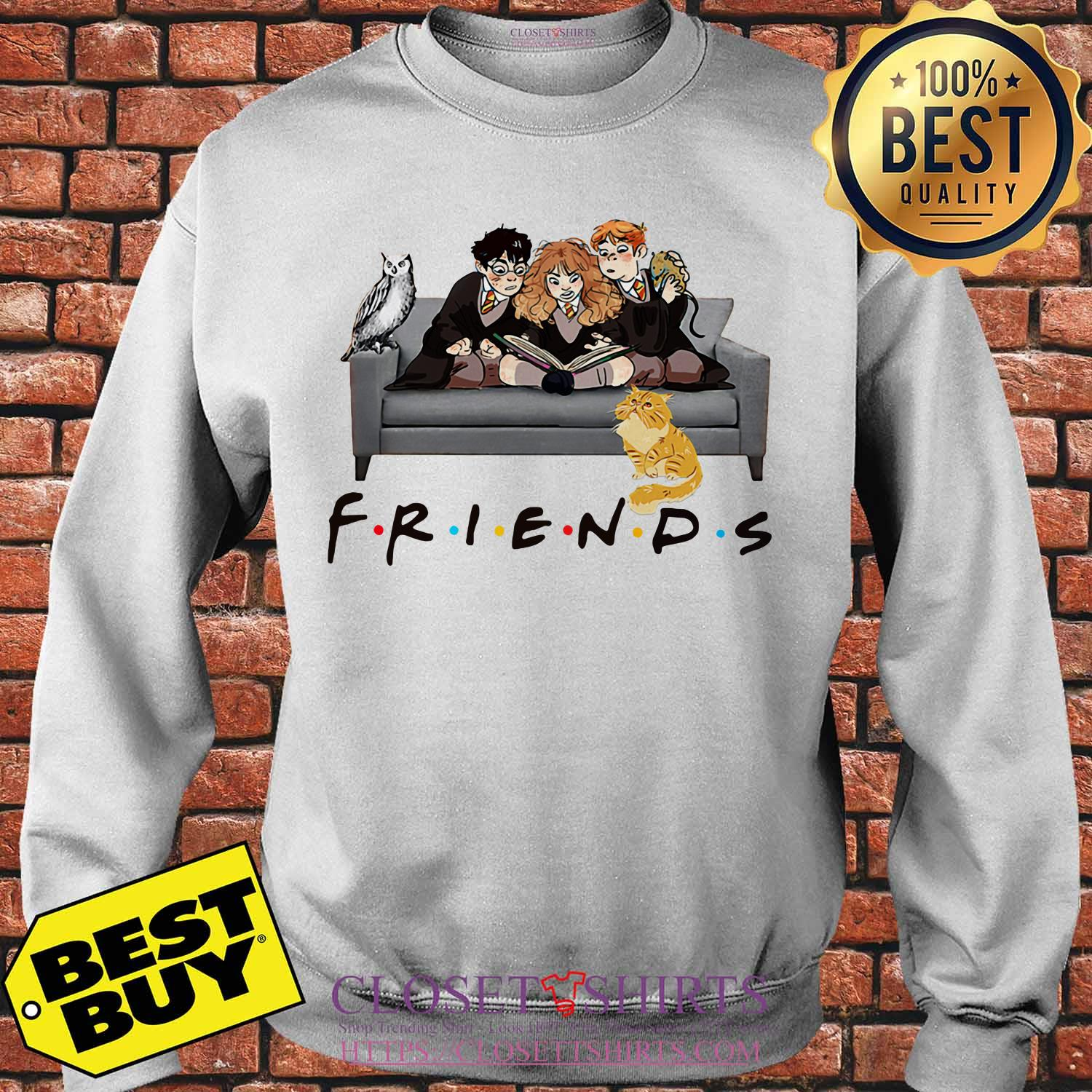 Friends Harry Potter Ron And Hermione Cat And Owl Sweatshirt