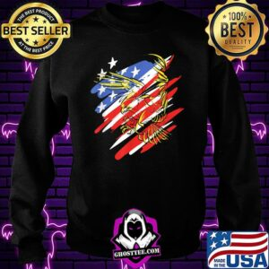 USA Flag Red White and Blue with Eagle T-Shirt Sweatshirt